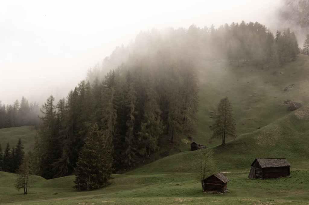 Tourisme et distanciation sociale : 5 pistes de réflexion par Bonjour Green, Studio de Rédaction Web. Photo de eberhard grossgasteiger sur Pexels.com
